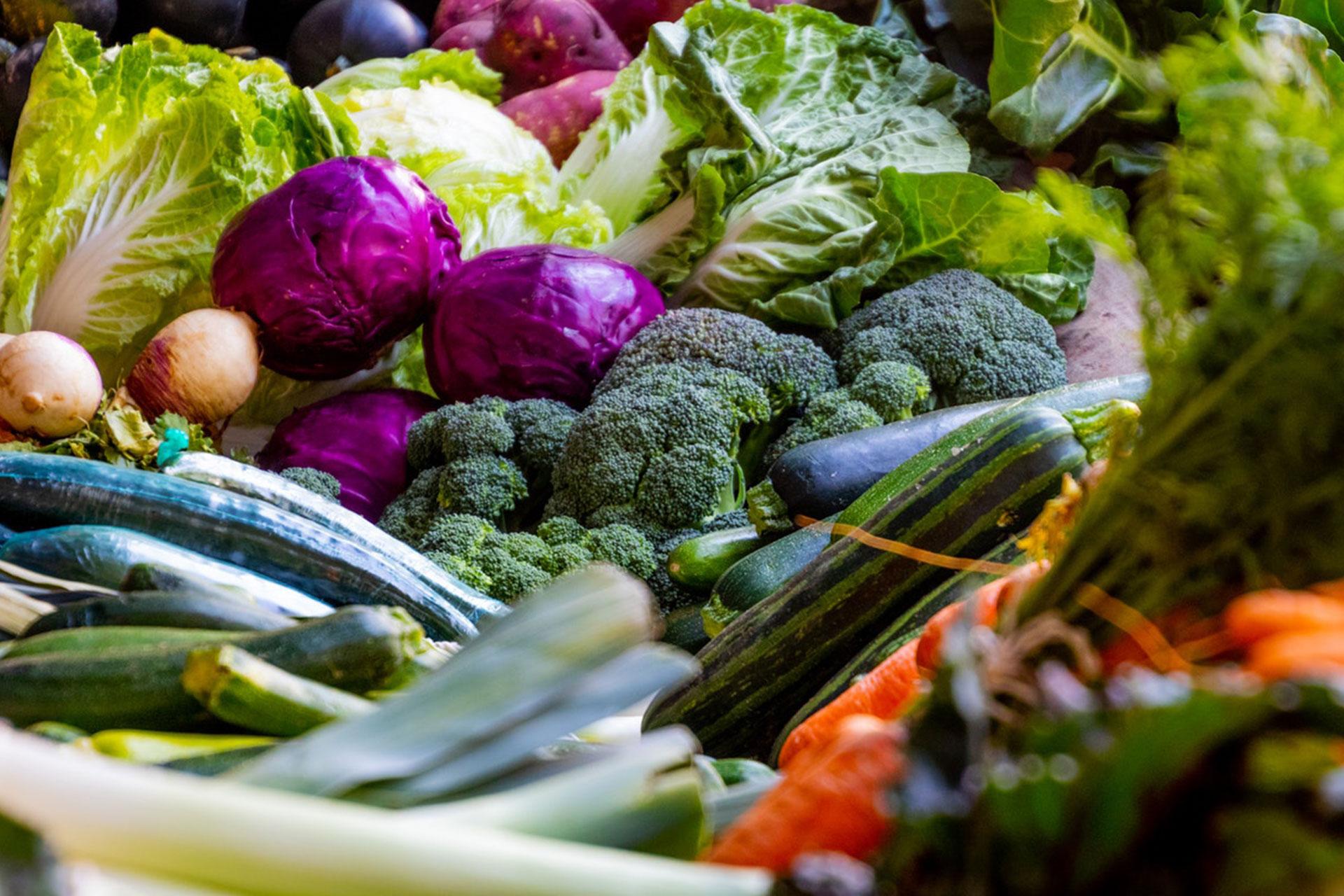 Banyak-makan-serat-untuk-menyehatkan-usus